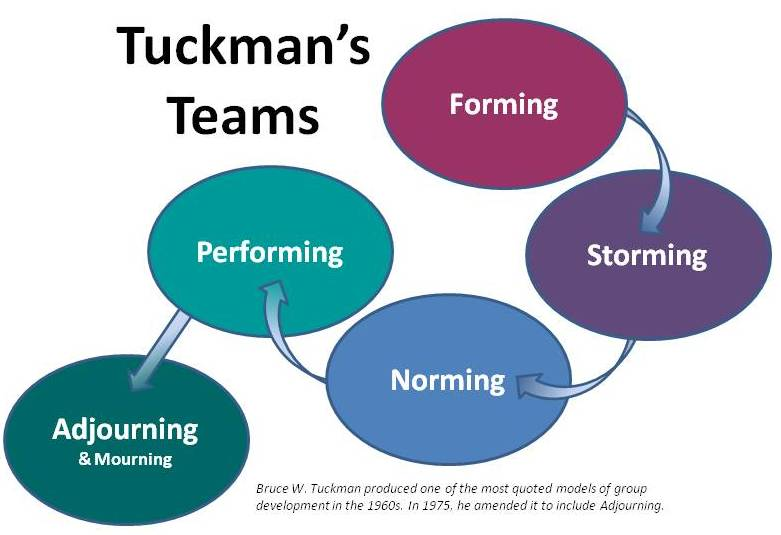tuckmans model Bruce tuckman's model is the most popular team development model in the agile world many coaches use this model as a tool for assessing the current level of cohesion of their team as well as.